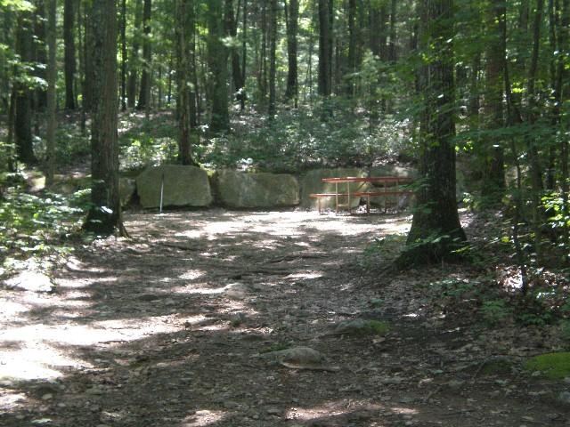 Campsite 82