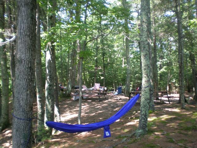 Campsite 83
