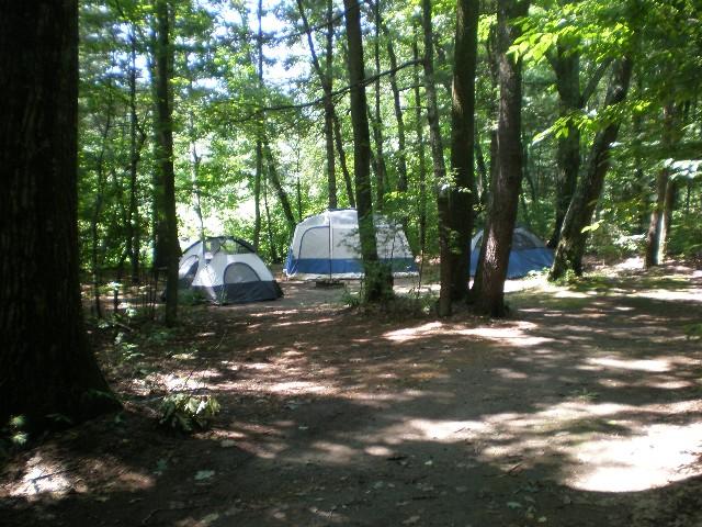 Campsite-P3